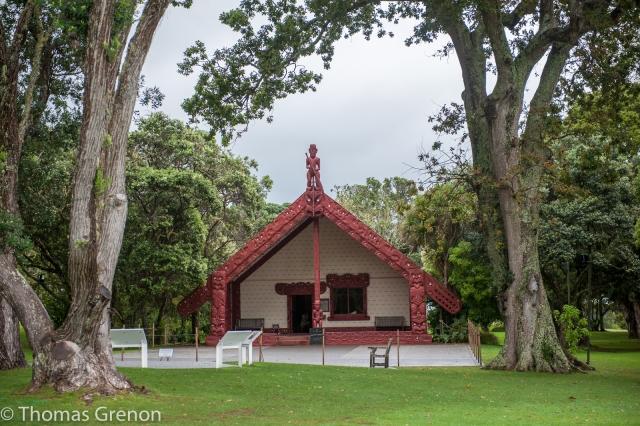 Te Whare Rūnanga, a carved meeting house.